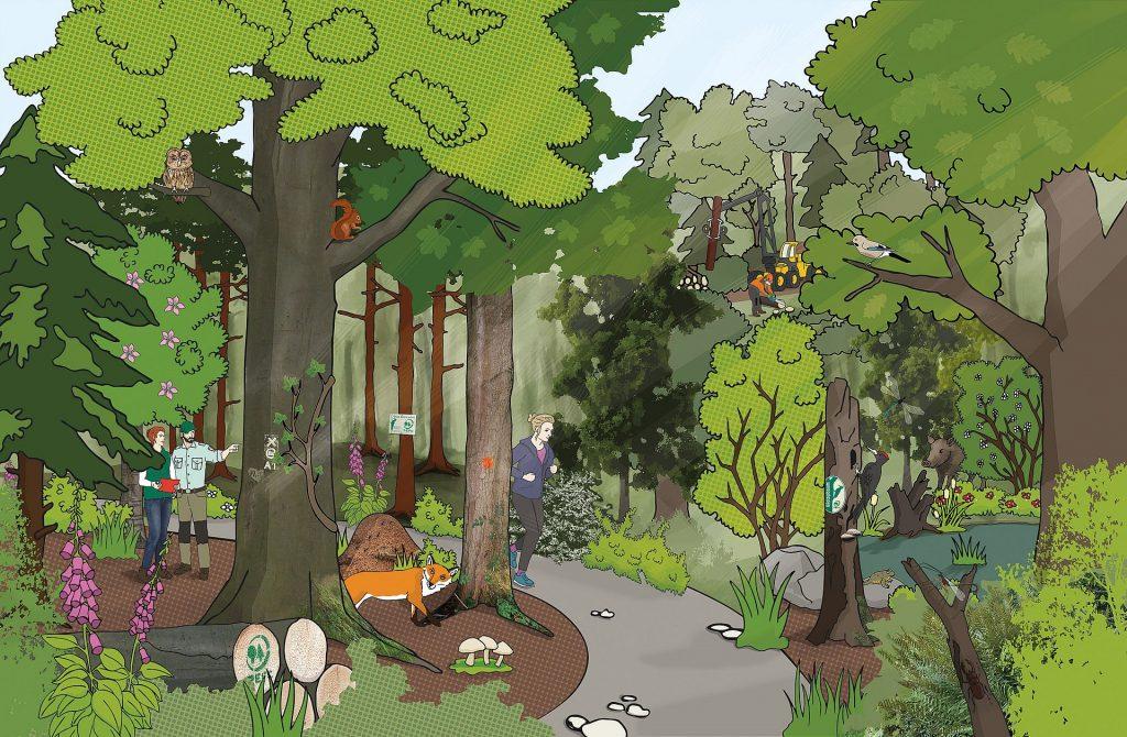 Waldposter für jüngere Schulkinder